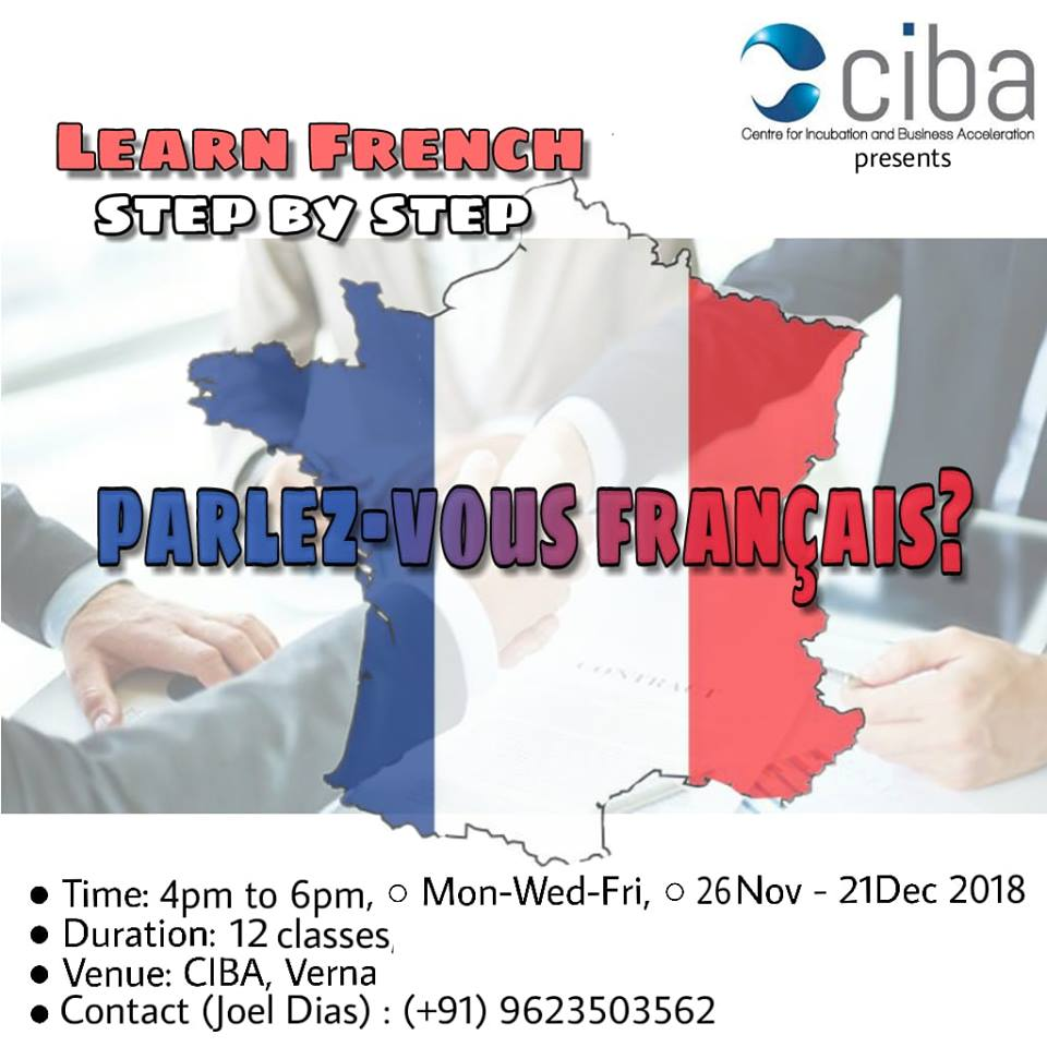ciba-LEARN FRENCH step by step
